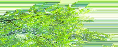 【関西、関東限定】取付サービス品S321/331 パーツ ハイゼットカーゴ | シートカバー 2017年【オートウェア】ハイゼット 後期 カーゴ 2017年 後期 ビジネスパック シートカバー レガート カラー:ブラック:PartsIsland お車の持込可能な方限定 | S321/331 HIJET CARGO | シートカバー | Autowear【人気TOP1】の安心発送の